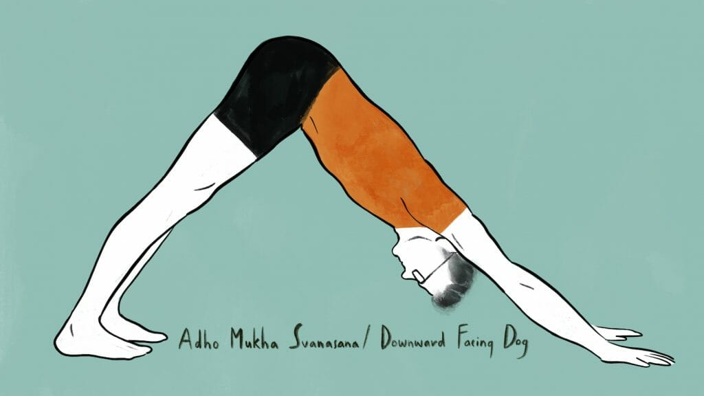 illustration of stephen doing adho mukha svanasana downward facing dog pose